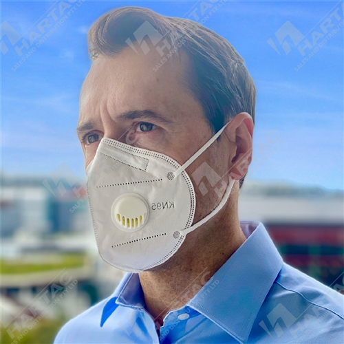 P2 Valved Flat Fold Disposable Face Mask with Ear Loop